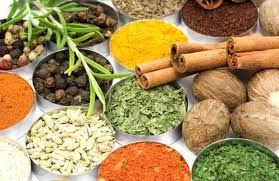 گیاهان مفید در مراقبت از مو(۱)