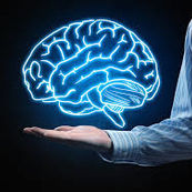 بعضی از ساختارهای اساسی مغز