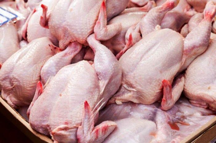 عوامل افزایش مجدد قیمت مرغ