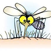 چگونه می توان از نیش پشه جلوگیری کرد؟