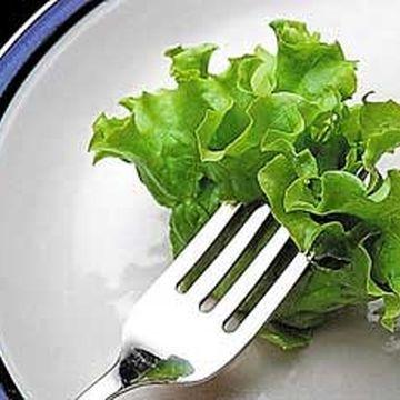 گیاهان دارویی مفید برای لاغری