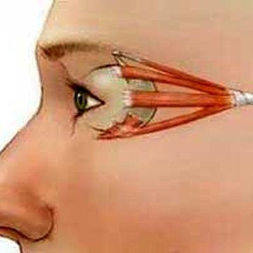 ورزش های مناسب برای تقویت چشم ها