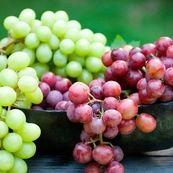با فواید و مضرات مصرف انگور آشنا شوید