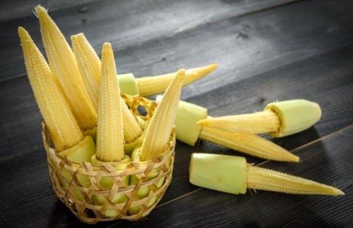 با این مواد غذایی فیبر و ویتامین بدنتان را تامین کنید
