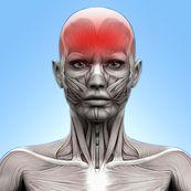 راه های درمان سردرد های عصبی