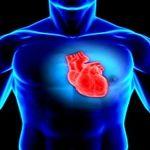 آیا مقدار هموسیستئین در خون برحسب جنسیت متفاوت است؟