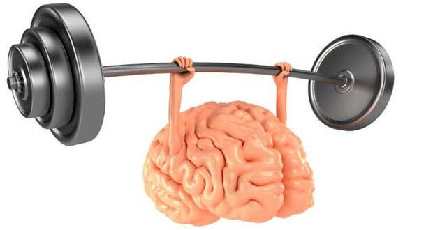 تاثیر برخی از مواد غذایی بر تقویت حافظه