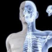 جلوگیری از پیشرفت پوکی استخوان و اسیدی شدن pH بدن