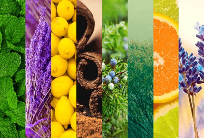 ویتامین ها و تاثیر آنها بر پوست