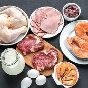 میزان پروتئین مورد نیاز بدن