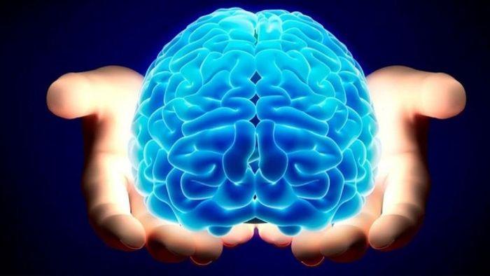 کوچک شدن مغز | چگونه بفهمیم مغزمان کوچک شده است؟