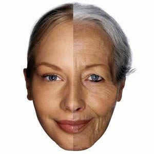علائم شروع پیری پوست چیست؟