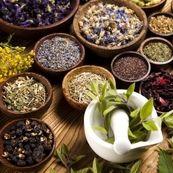 طب گیاهی را بیشتر بشناسید