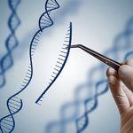 منظور از بیماری های ژنتیکی (توسط ژن غالب) چیست ؟