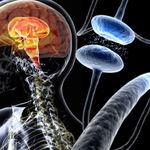 نکاتی درباره بیماری پارکینسون(پارکینسون چیست؟)
