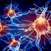 متعادل سازی هورمون های بدن(۱)
