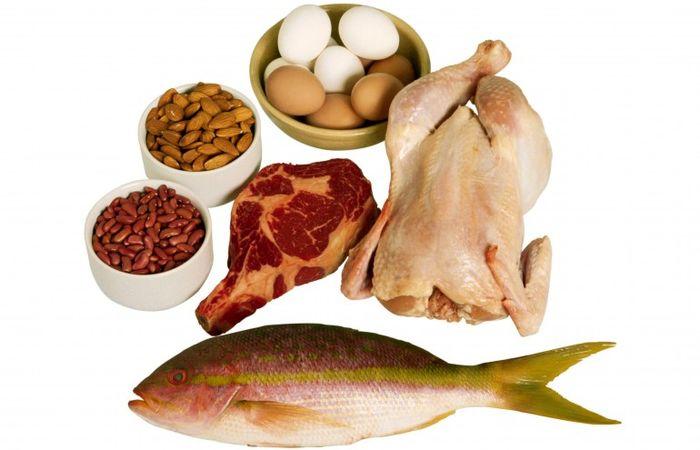 آشنایی بیشتر با پروتئین ها