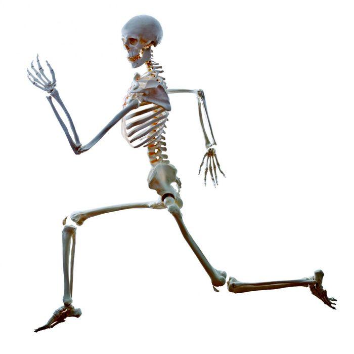 بهترین راه برای داشتن استخوان های مستحکم