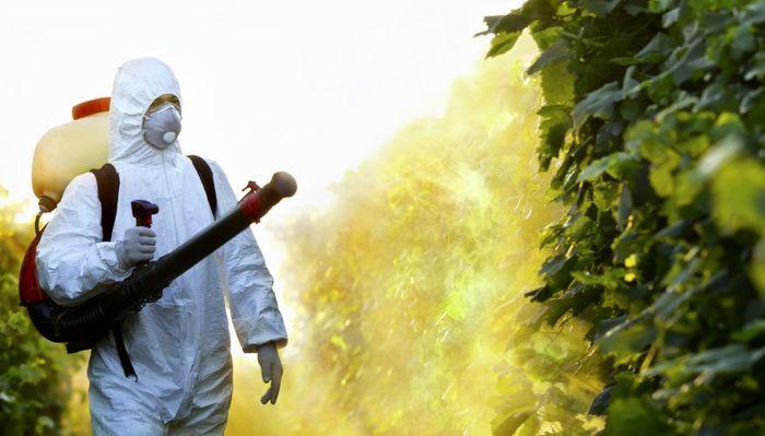 مبارزه و دفع آفات و حشرات موذی در محوطه و فضای سبز