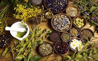 گیاهانی که باید در منزل داشته باشید